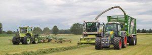 Gras hächseln Lohnunternehmen Zöller Süstedt