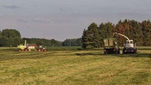 Lohnunternehmen Werner Zöller - Gras häckseln