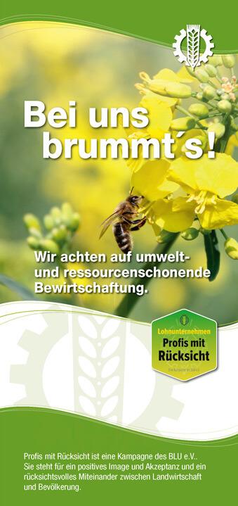 Titelseite Biene